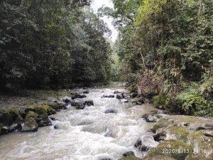 PLTM Parmonangan II Manfaatkan Sungai Sibundong Hasilkan Listrik
